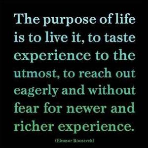 101 Life Quotes Lexiyoga
