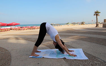sun salutation for beginners  lexiyoga