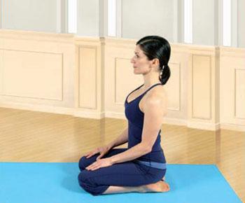 vajrasana  kneeling pose  lexiyoga